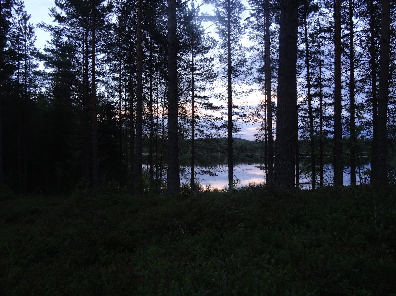 20-Schweden2016